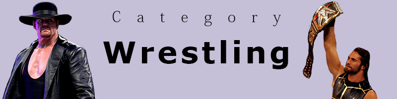 wrestling category